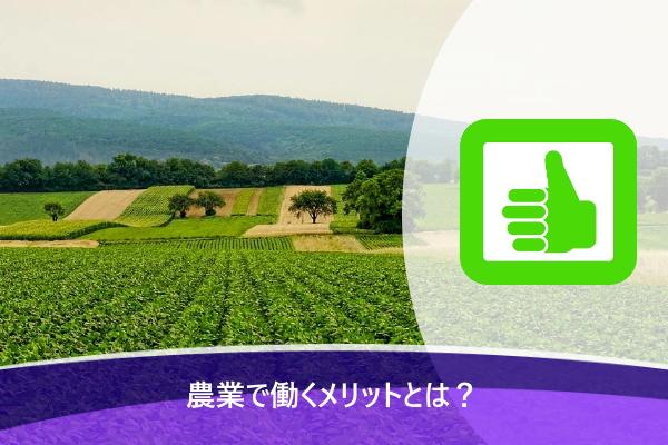 農業で働くメリットとは?